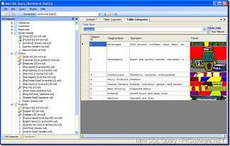 Mini SQL Query